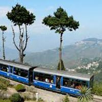 Darjeeling With Pelling Tour