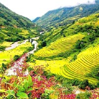 Sapa Easy Trekking 2 Days - Home stay