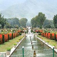 Bagh - e - Kashmir Tour