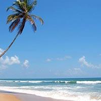 South India Beaches Tour - 02 Nights / 03 Days