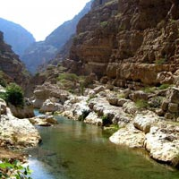 Desert & Wadi Adventure (2 Nights) Tour