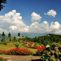 Mesmerizing Holidays To Darjeeling - Pelling - Gangtok Tour