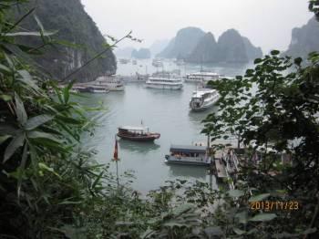 Swan Cruise to Bai Tu Long Bay 2 Days/ 1 Night:120 Usd/pax