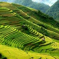 Vietnam Green Trail 6 Days/ 5 Nights
