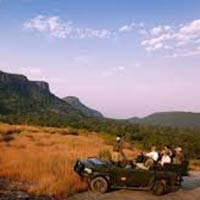 Bandhavgarh - Fort of the Tiger Tour