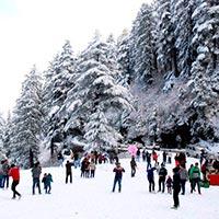 Kullu - Manali - Shimla - Dharamsala - Delhousie (8N/9D) Tour