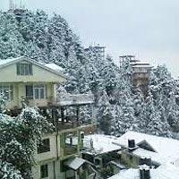 Shimla Kullu Manali Tour