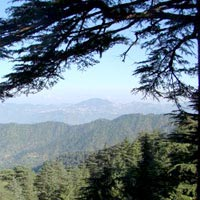 Chail Weekend Gateways