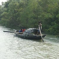 Sundarbans visit 2n/3days Tour
