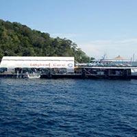 Deep Sea Discoveries (Reef platform) Tour