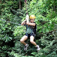 Discover & Conquer Langkawi's Rainforest Canopy