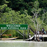 Bako National Park Tour