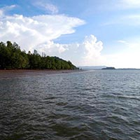 Mangrove & Irrawaddy Dolphin Cruise Tour