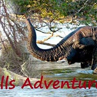 Botswana Adventure Safari Tour