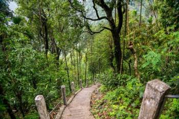 7 Days Meghalaya Tour Package