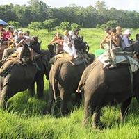 Best of Nepal Tours (Kathmandu, Nagarkot, Chitwan, Lumbini, Pokhara and Ghorepani)