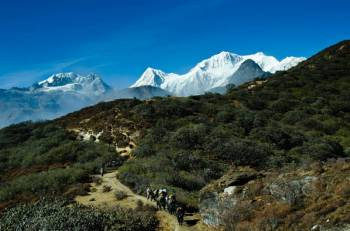 Trekking in Sikkim Tour