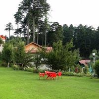 Patnitop Jammu tour