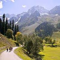 Kashmir Tour With Amarnath Yatra Tour