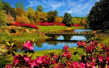 Kashmir Spring Special Tour
