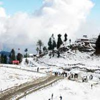 Shimla & Manali Volvo Tour (8 Days)
