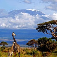 Best of Tanzania Tour