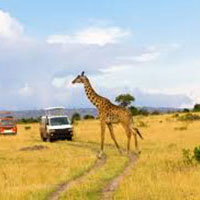 Kenya Adventure Tour