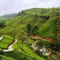 Visit Srilanka Tour