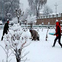 Best Of Kashmir Bonanza Srinagar With Gulmarg And Pahalgam