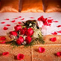 Budget Honeymoon Package Of Tattapani ( Shimla ) Himachal Pradesh