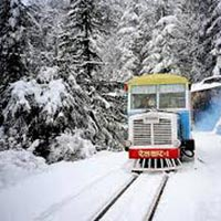 Exciting Tour Of Shimla