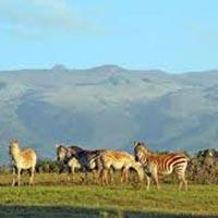8 Days Mt Elgon & Jinja tour