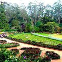 South India Package - Bangaluru 6N/7D Tour