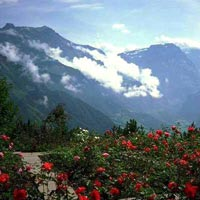 7Nights/8Days Uttrakhand Tour Package‏