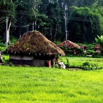2 nights / 3 days  Wayanad Tour Package