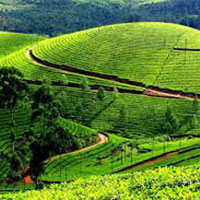 Short Escape to Ooty Package