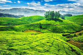 Kerala Tour 6 Nights Tour