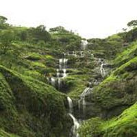 Beautiful Coorg Tour