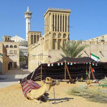 Magical Dubai Tour