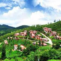 Mysore - Coorg - Wayanad - Ooty - Kodaikanal Tour