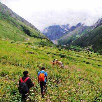 Hemkund Sahib Valley Of Flowers Trek Tour