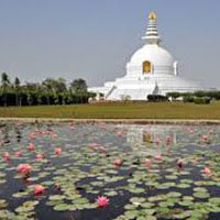Special Buddhist Tour