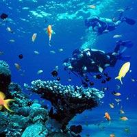 Weekend Wetspot Diving Package