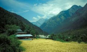 Kasol package Camping & Trekking By Pvt. Car