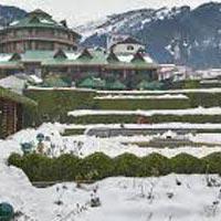 Manali And Shimla Tour