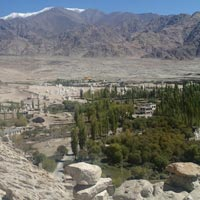 Group Tours / Leh Ladakh