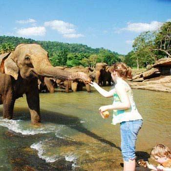 Srilanka Tour - Awesome Lanka