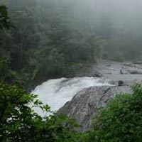 3 Days Wayanad Tour