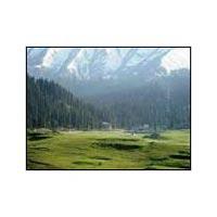 Srinagar - Pahalgam - Gulmarg Nature Paradise Tour