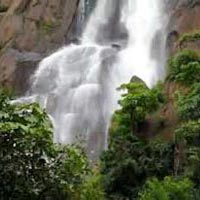 Ranchi, Netarhat & Betla (Totally - 3 Nights 4 Days) Tour